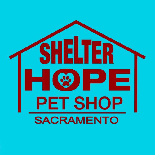 Shelter Hope Sac starts a blog!   Shelter Hope Sacramento